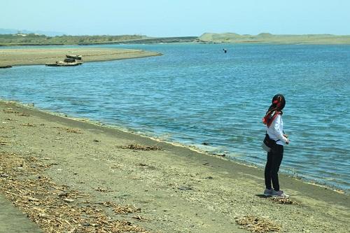 Menikmati Wisata Pantai Jogja Di Mangrove Baros Bantul